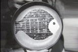 Plat avec décor de poisson, années 50.